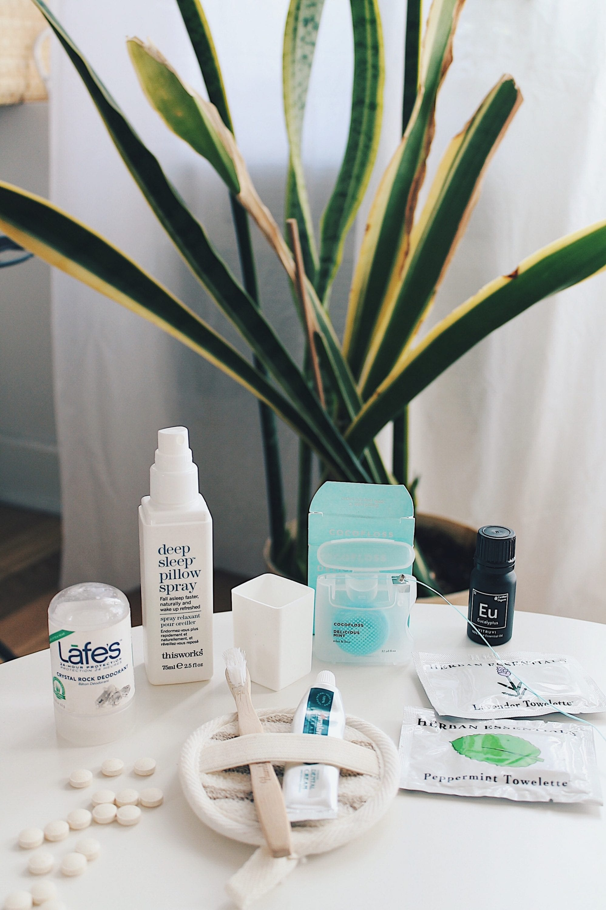 items for travel wellness