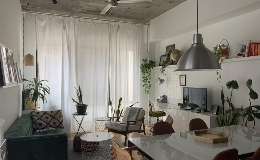 keeping plants at home
